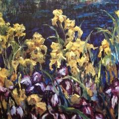 Iris   $150